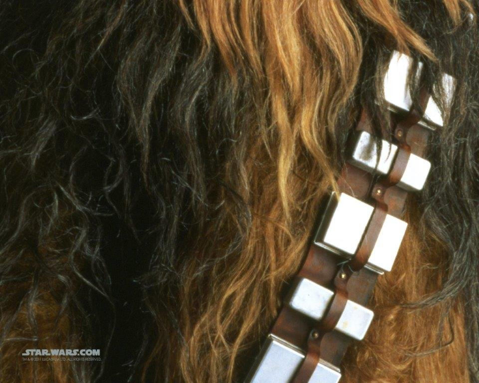 An image of Chewbacca's fur.